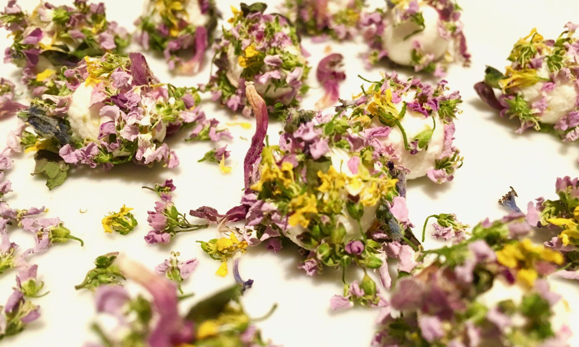 Frischkäsebällchen mit Blüten